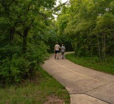 Take Fido for a Hike
