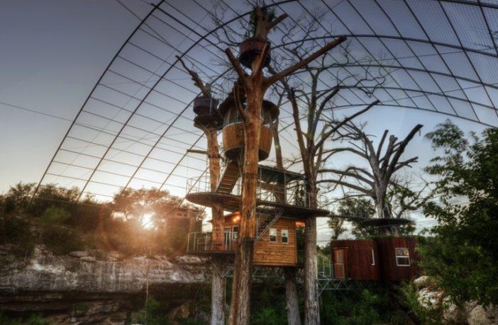 austin treehouse