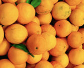 Vitamin C & Weight Loss: What You Need to Know